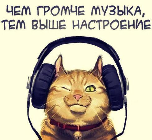 даже кот слушает музыку